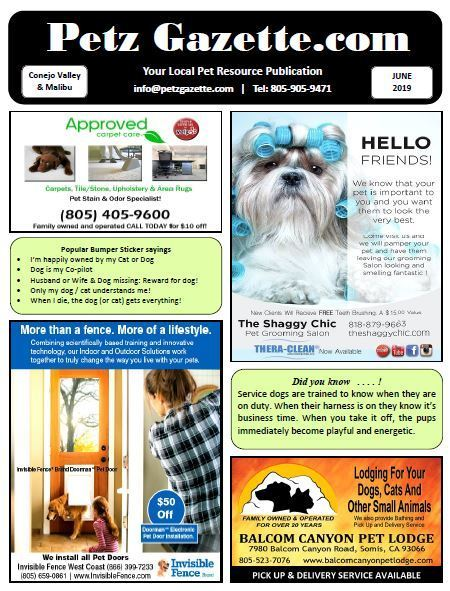 Conejo Valley | Full Issue | Jun 2019