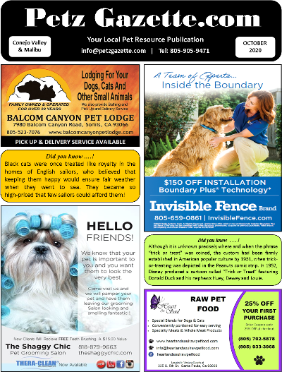 Conejo Valley & Malibu | OCT 2020