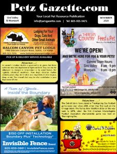 Simi Valley & Moorpark   NOV 2020